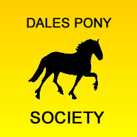 Society Secretary: Mrs J C Ashby