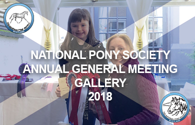 Annual General Meeting Gallery 2018