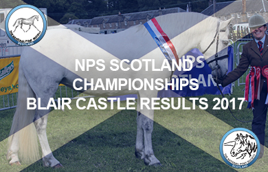 Blair Castle Results 2017