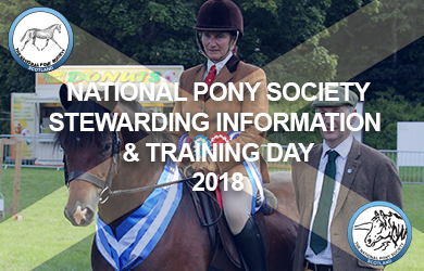 STEWARDING INFORMATION AND TRAINING DAY