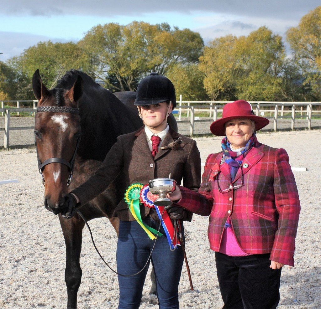 champion light horse