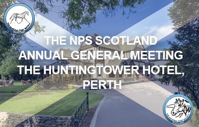Huntington Hotel Perth Graphic