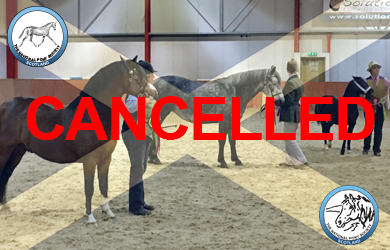 In-hand show GRAPHIC 2019 CANCELLED